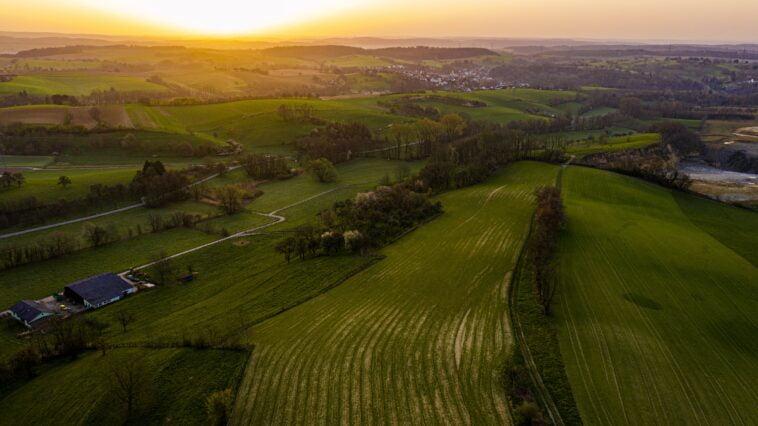 ekologinis ūkininkavimas šienavimo darbai